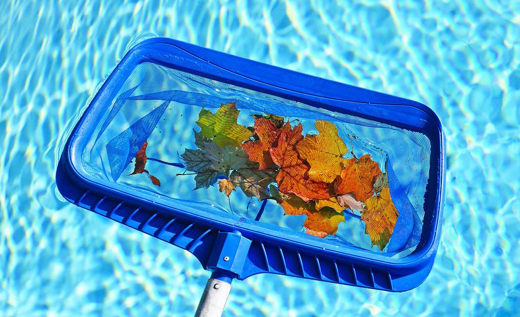 Cómo limpiar tu piscina durante el verano