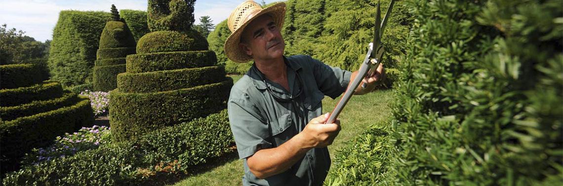 Mantenimiento y Limpieza de Jardines. Empresas de Jardineria.